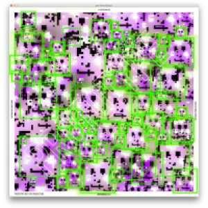 14129352-LyTWV.jpg