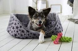 NKD Haustier Hunde Zubehoer