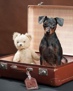 Koffer mit Anhaenger