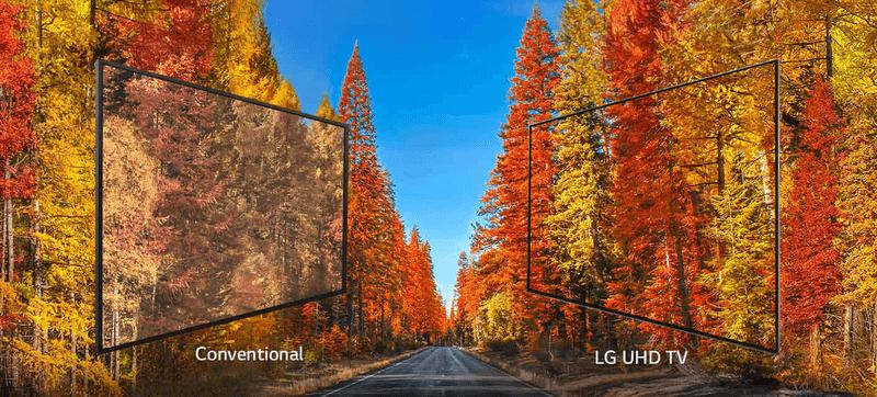 LG OLED Fernseher 75UK