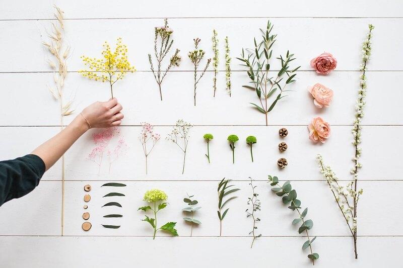 Yves Rocher Pflanzen-Kosmetik
