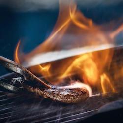 grill ratgeber