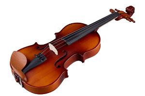 Thomann Violine