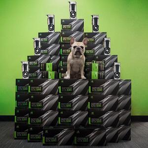 NVIDIA GeForce 1080 kaufen