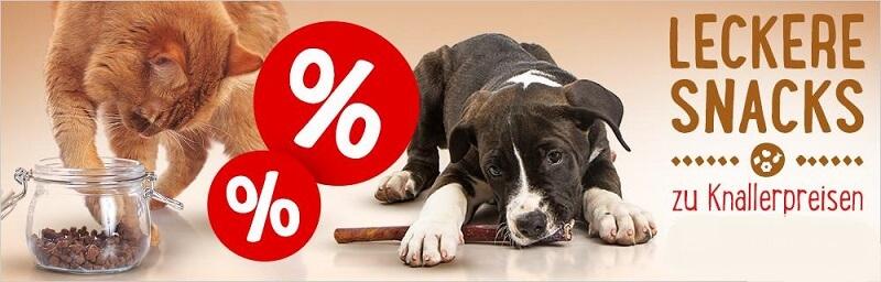 zooplus Hundefutter Snacks Knallerpreise