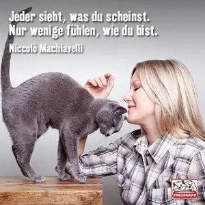 Fressnapf fuer die Katze