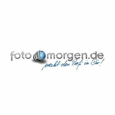 Foto-Morgen, 10% Cyber-Monday Rabatt