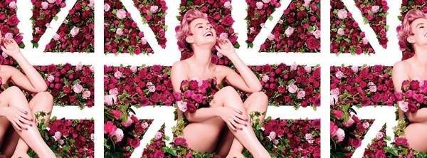 """Die Serie """"British Rose"""""""
