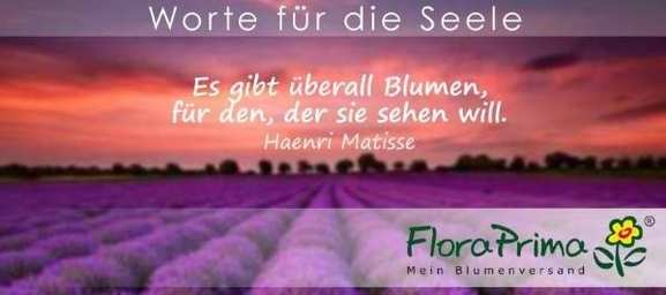Worte für die Seele von FloraPrima