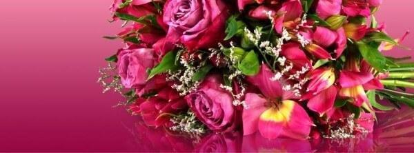 MIFLORA Blumenversand