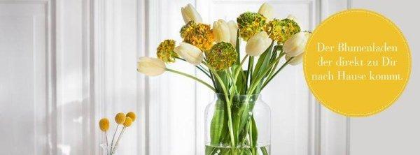 bloomydays frisch