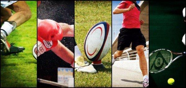 sportsdirect sport