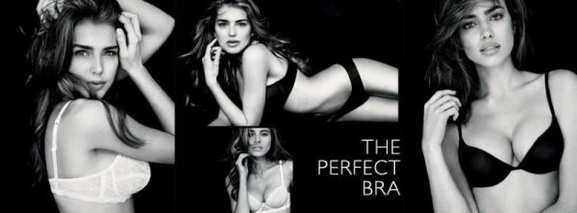 intimissimi the perfect bra