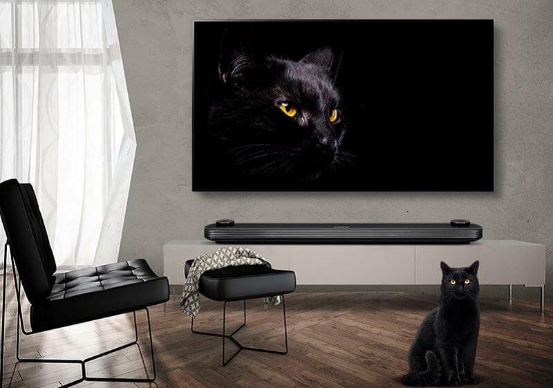 OLED Fernseher LG 65C8