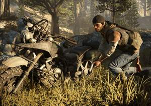 Days Gone Crafting