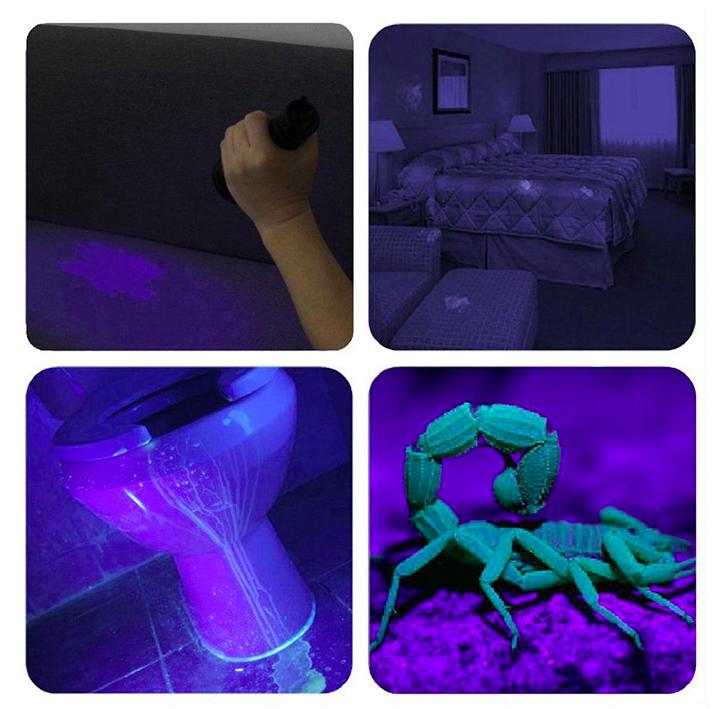 wieder verf gbar uv licht led taschenlampe mit 21 leds. Black Bedroom Furniture Sets. Home Design Ideas