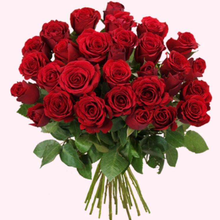 [Blume Ideal] 44 rote Rosen für 25,94€ inklusive Versand