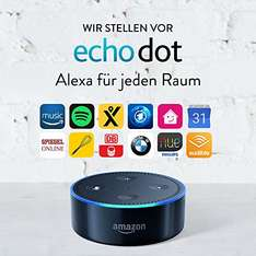 Amazon Echo Dot 2nd Gen (schwarz / weiß)