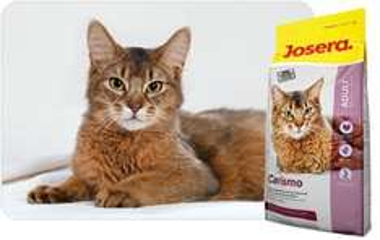 Josera Katzenfutter - Kostenlose Futterproben