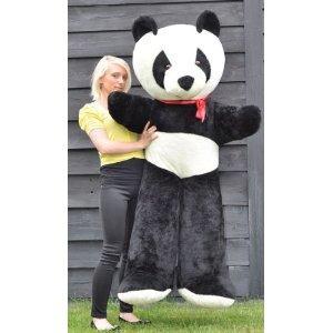Riesen Pandabär Plüschbär  170cm groß