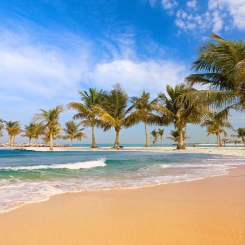 Flüge: Amsterdam – Miami für 376€ / Berlin – Dubai für 256€ (Hin u. Rückflug)