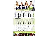 PEARL Jahreskalender 2013 mit praktischer Tagesanzeige