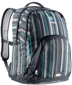Deuter Rucksack Fellow ash black stripes 26l