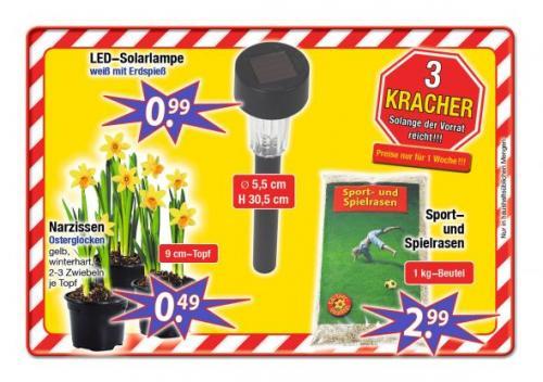 [CenterShop] LED Solarlampe weiß mit Erdspieß für 99cent