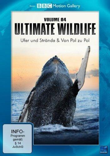 BBC Motion Gallery: Ultimate Wildlife Vol. 4: Ufer und Strände & Von Pol zu Pol