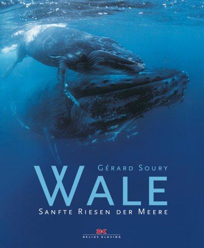 Wale: Sanfte Riesen der Meere [Gebundene Ausgabe]