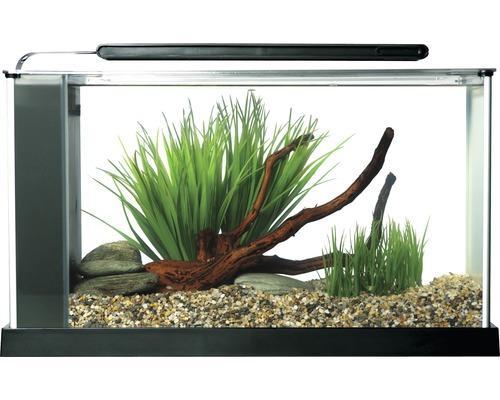 Nano-Aquarium Fluval Spec 5 für 80,55 €
