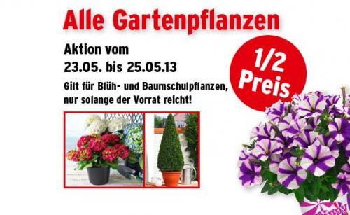 Max Bahr - 50% auf alle Gartenpflanzen (bis 25.05)