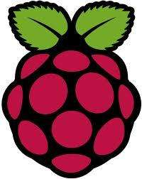 Raspberry Pi Model B bei getgoods