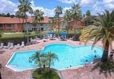 Florida ab Amsterdam - Mini Suite - 7 Nächte - Daily Dream Deal