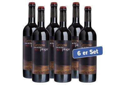 6x 0,75l Monte Plogar Carinena DO Reserva für 14,99€ zzgl. 4,95€ Versand bei Lidl Online