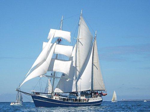 Segeltörn mit Dreimaster Pedro Doncker zur Hanse Sail in Rostock: 3 Stunden für 17,50 Euro - 7 Stunden für 37,50 Euro