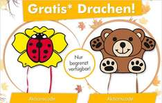 GRATIS Flugdrachen Marienkäfer oder Teddy bei myToys.de ab MBW 25 Euro