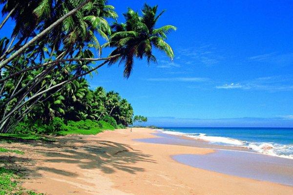 Flüge: Malediven ab Frankfurt 384,- € - kostenloser längerer Stopover auf Sri Lanka möglich (Oktober - Dezember, auch Herbstferien)