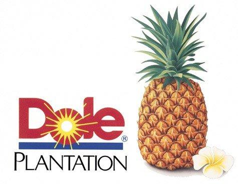 Dole Ananas für 0,99€ im Markt (real bundesweit)