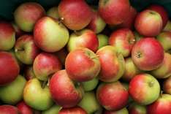 [Bonn] Kostenlose Äpfel (2kg Beutel) bei Ümit- egal wieviel Tüten & kostenloser Becher Kaffee bei Aldi