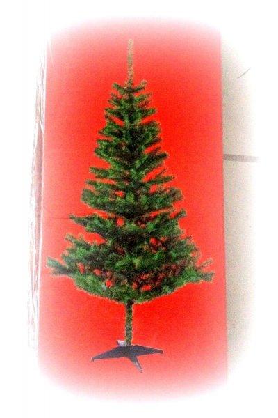 Weihnachtsbaum - ist es denn schon wieder so weit ?