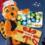 [Offline] 20% bei Obi durch Geschenkkartenaktion am 30.11.2013 (40€ Karte kaufen, 10€ Karte geschenkt)
