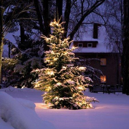christmaxx Solar-Lichterkette Outdoor-Kerzen bei Netto für 9,98 € + Versand