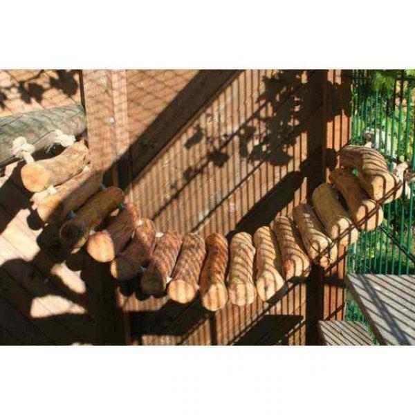 Kostenlose Hängebrücke für die Katze