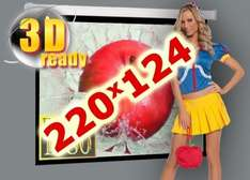 [ebay] Motor Beamer Leinwand  Rollolux Advance 220x124cm 16:9