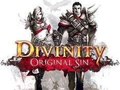 Divinity: Original Sin [STEAM] Early Acc 18,05€