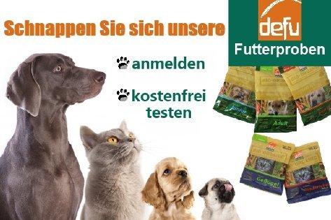 Kostenlose Futterproben für Hunde und Katzen!