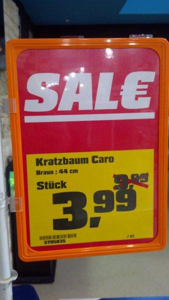 Kratzbaum bei Obi in Erlangen für 3,99