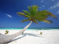 L'Tur: Wieder günstige Karibikflüge (Hamburg-Punta Cana) im Februar und März (versch. Termine) ab 350€