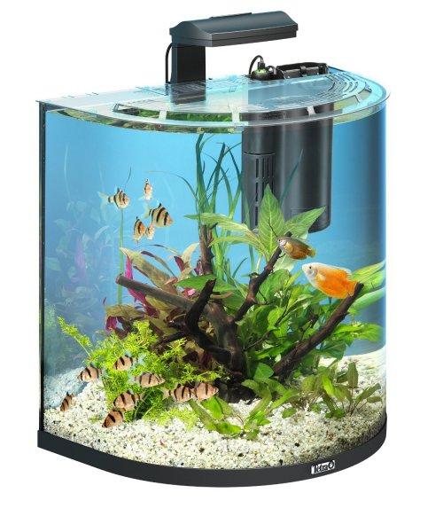 Tetra AquaArt Explorer Line Tropisches Aquarium Komplett-Set 60L